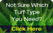 Hi Quality Turf Services banner