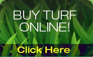 Hi Quality Turf Online Shop banner