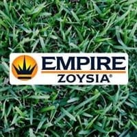 Empire-Zoysia