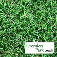 Greenlees Park Couch