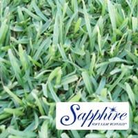 Sapphire-Buffalo