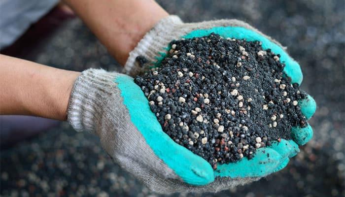 Woman holds pile of organic soil fertiliser for turf