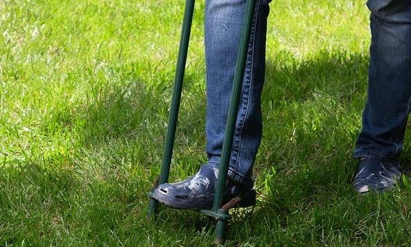 Woman aerating her lawn by spiking holes