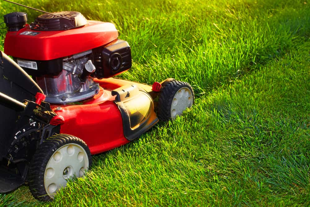 Red lawn mower mowing grass