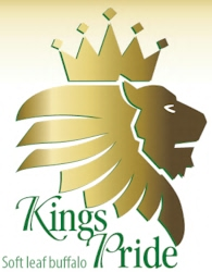 Kings Pride Buffalo Logo